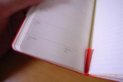 限定版 MOLESKINE 赤 スケジュール + ノート 2007年